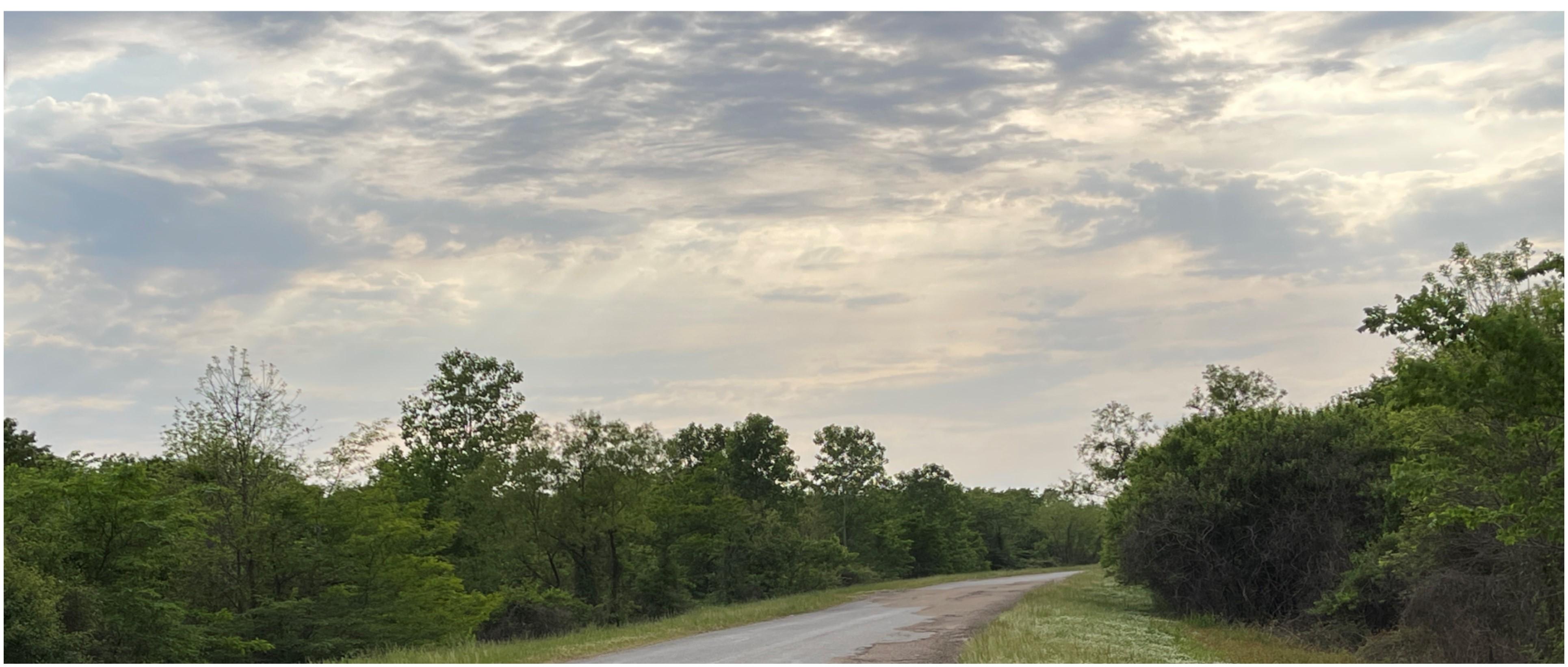 , Cascilla, Mississippi 38920